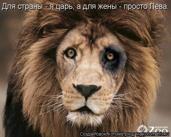 Котоматрица: Для страны - я царь, а для жены - просто Лёва.