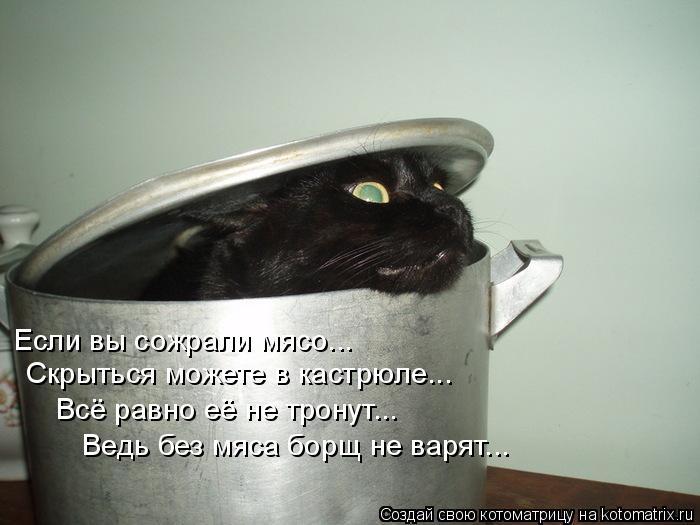 Котоматрица: Если вы сожрали мясо... Скрыться можете в кастрюле... Всё равно её не тронут... Ведь без мяса борщ не варят...
