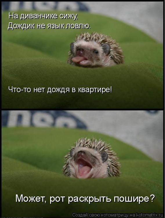 Подборка позитива :)
