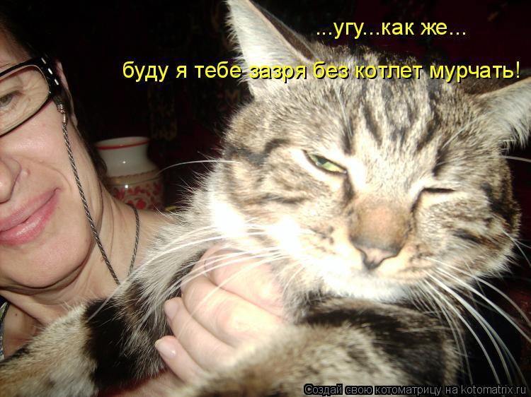 Котоматрица: ...угу...как же... буду я тебе зазря без котлет мурчать!