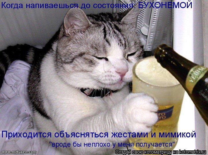 """Котоматрица: Когда напиваешься до состояния: БУХОНЕМОЙ Приходится объясняться жестами и мимикой """"вроде бы неплохо у меня получается"""""""