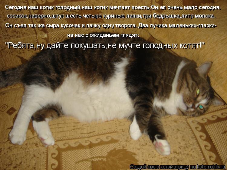 Котоматрица: Сегодня наш котик голодный,наш котик мечтает поесть;Он ел очень мало сегодня: сосисок,наверно,штук шесть,четыре куриные лапки,три бедрышка,