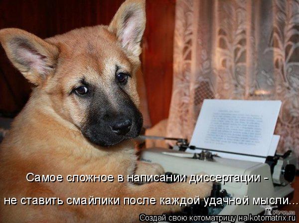 Котоматрица: Самое сложное в написании диссертации -  не ставить смайлики после каждой удачной мысли...