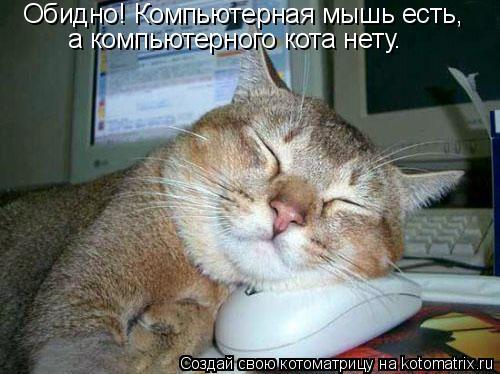Котоматрица: Обидно! Компьютерная мышь есть,  а компьютерного кота нету.