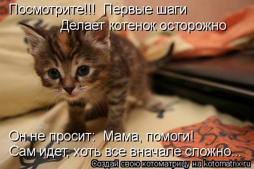 Котоматрица: Посмотрите!!!  Первые шаги Делает котенок осторожно Он не просит: «Мама, помоги!» Сам идет, хоть все вначале сложно...