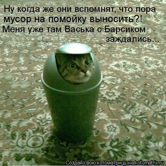 Котоматрица: Ну когда же они вспомнят, что пора  мусор на помойку выносить?!   Меня уже там Васька с Барсиком   заждались...