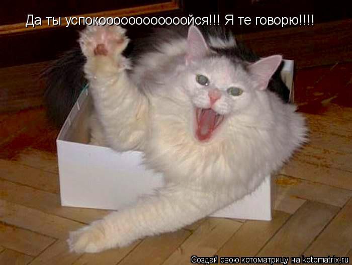 Котоматрица: Да ты успокоооооооооооойся!!! Я те говорю!!!!