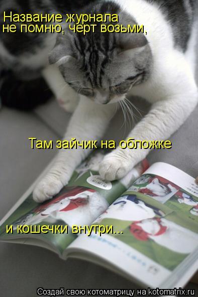 Котоматрица: Название журнала не помню, черт возьми, Там зайчик на обложке и кошечки внутри...