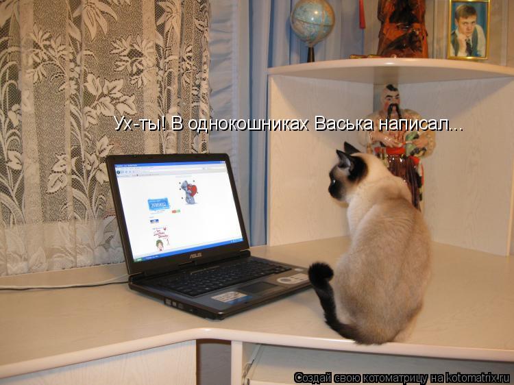 Котоматрица: Ух-ты! В однокошниках Васька написал...