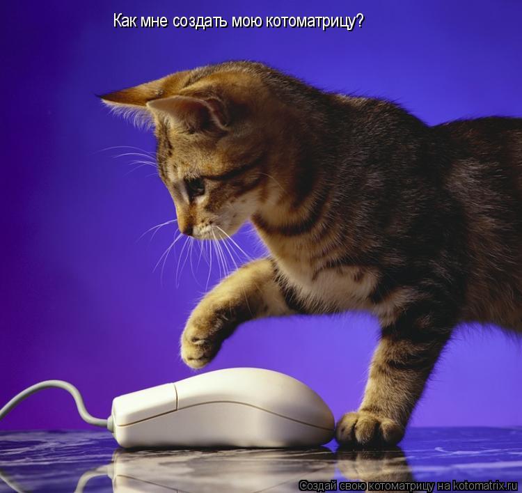 Котоматрица: Как мне создать мою котоматрицу?