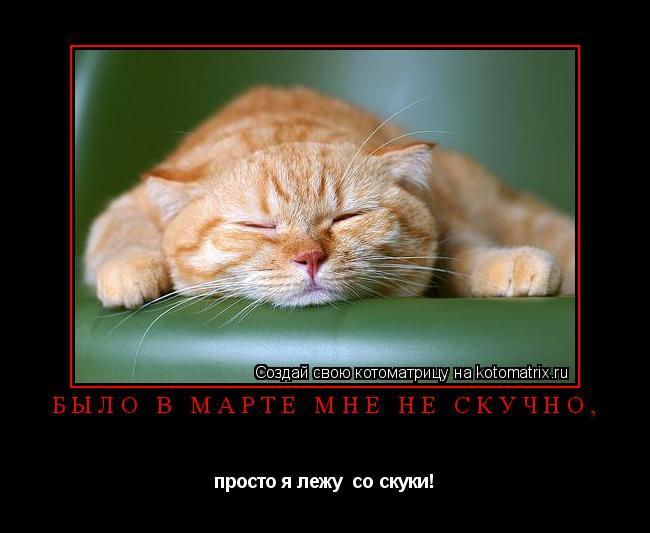 Котоматрица: Было в марте мне не скучно, просто я лежу  со скуки!