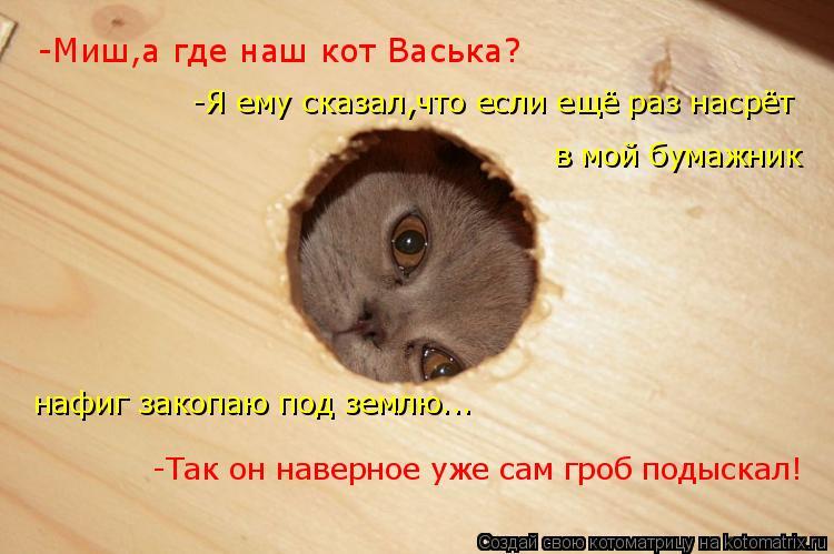 Котоматрица: -Миш,а где наш кот Васька? -Я ему сказал,что если ещё раз насрёт в мой бумажник нафиг закопаю под землю... -Так он наверное уже сам гроб подыска