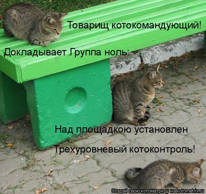 Котоматрица: Товарищ котокомандующий! Докладывает Группа ноль: Над площадкою установлен Трехуровневый котоконтроль!