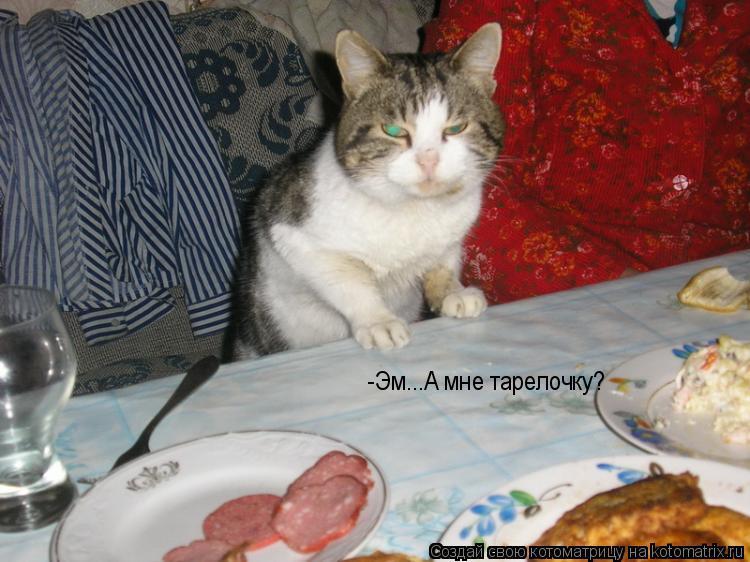 Котоматрица: -Эм...А мне тарелочку?