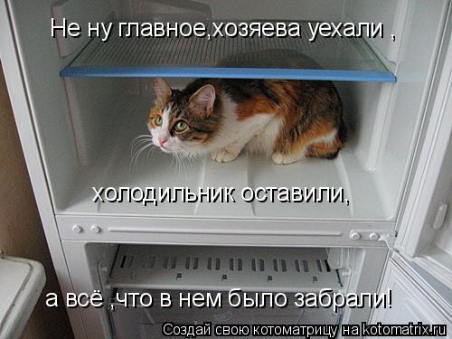 Котоматрица: Не ну главное,хозяева уехали , холодильник оставили, а всё ,что в нем было забрали!