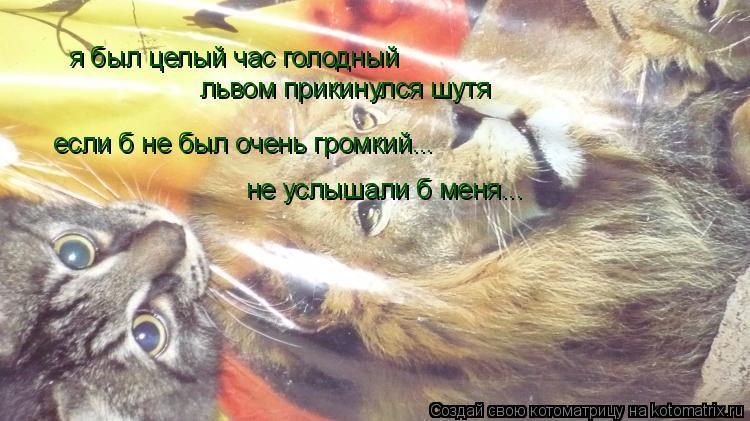 Котоматрица: я был целый час голодный львом прикинулся шутя если б не был очень громкий... не услышали б меня...