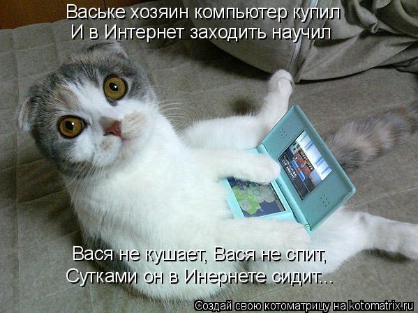 Котоматрица: Ваське хозяин компьютер купил  И в Интернет заходить научил Вася не кушает, Вася не спит,  Сутками он в Инернете сидит...