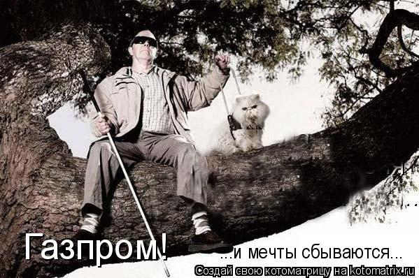 Котоматрица: Газпром! ...и мечты сбываются...