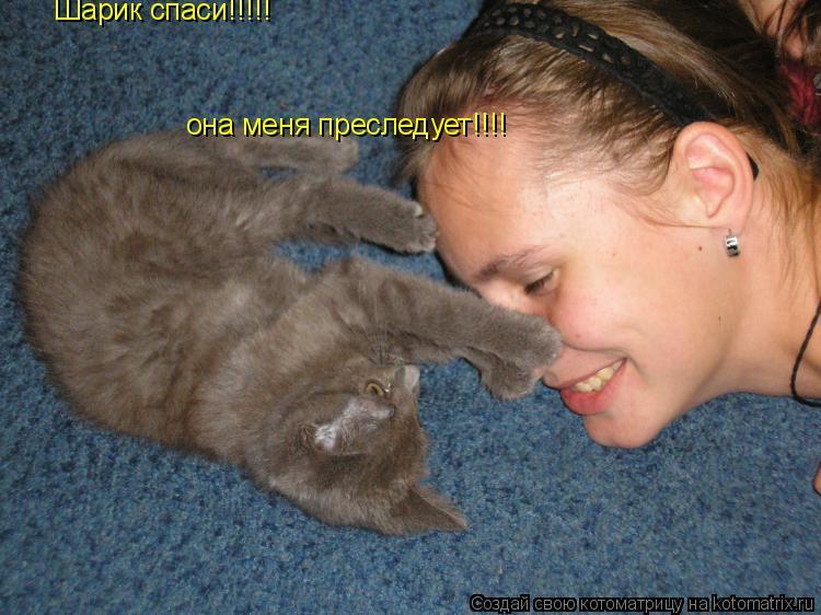 Котоматрица: Шарик спаси!!!!! она меня преследует!!!!