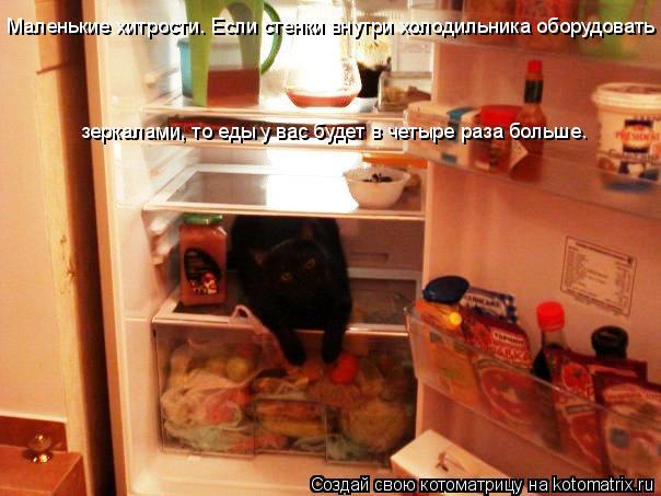 Котоматрица: Маленькие хитрости. Если стенки внутри холодильника оборудовать зеркалами, то еды у вас будет в четыре раза больше.