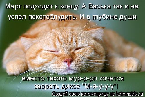 """Котоматрица: Март подходит к концу. А Васька так и не успел покотоблудить. И в глубине души  вместо тихого мур-р-рл хочется заорать дикое """"М-я-у-у-у""""!"""