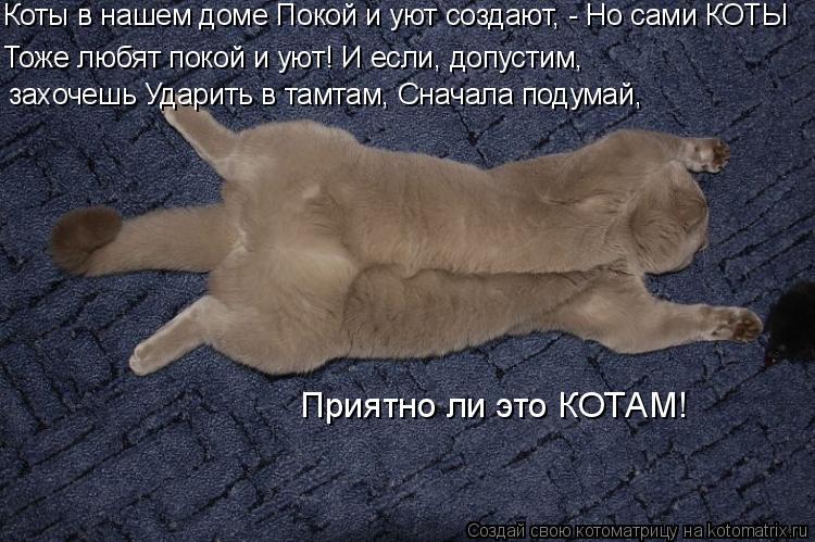 Котоматрица: Коты в нашем доме Покой и уют создают, - Но сами КОТЫ Тоже любят покой и уют! И если, допустим, захочешь Ударить в тамтам, Сначала подумай, Прия