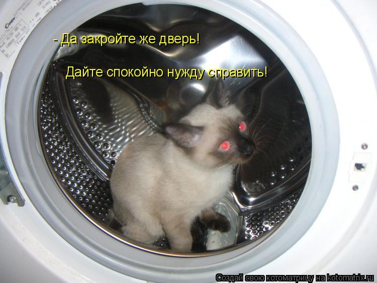 Котоматрица: - Да закройте же дверь! Дайте спокойно нужду справить!