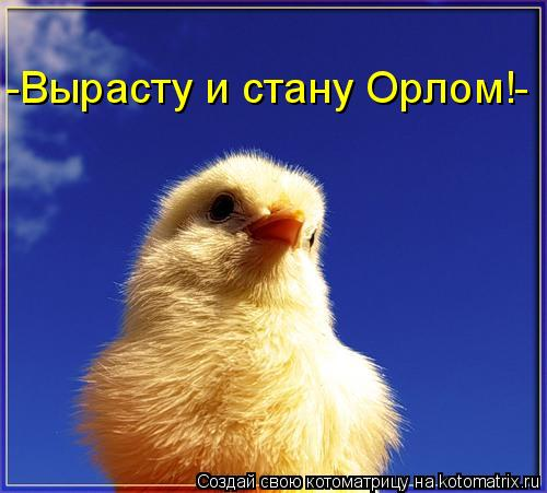 http://kotomatrix.ru/images/lolz/2009/03/29/Yd.jpg