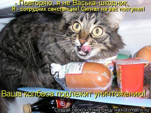 Котоматрица: - Повторяю, я не Васька-шкодник, Я - сотрудник санстанции! Сигнал на вас поступил! Ваша колбаса подлежит уничтожению!