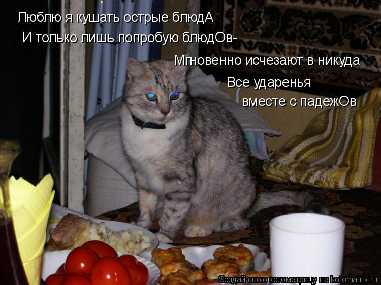 Котоматрица: Люблю я кушать острые блюдА И только лишь попробую блюдОв- Мгновенно исчезают в никуда Все ударенья вместе с падежОв