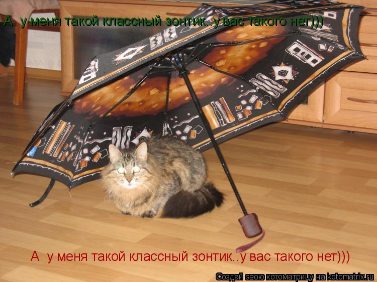 Котоматрица: А  у меня такой классный зонтик..у вас такого нет))) А  у меня такой классный зонтик..у вас такого нет)))