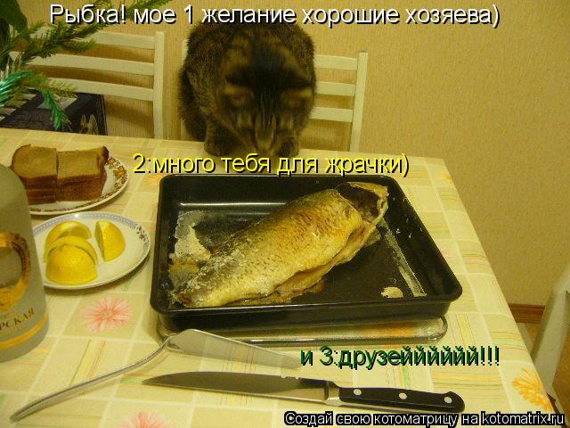 Котоматрица: Рыбка! мое 1 желание хорошие хозяева) 2:много тебя для жрачки) и 3:друзейййййй!!!