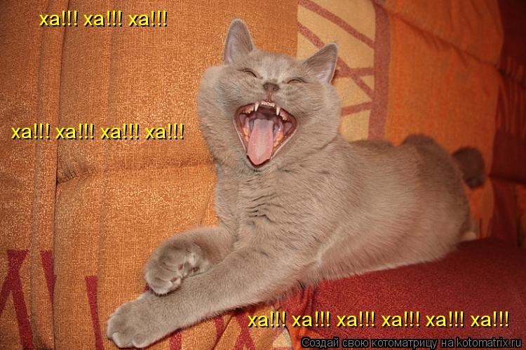 Котоматрица: ха!!! ха!!! ха!!!  ха!!! ха!!! ха!!! ха!!! ха!!! ха!!!  ха!!! ха!!! ха!!! ха!!!