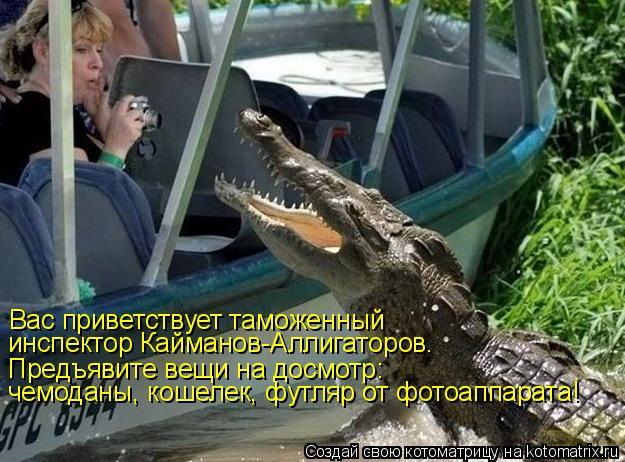 Котоматрица: Вас приветствует таможенный инспектор Кайманов-Аллигаторов. Предъявите вещи на досмотр: чемоданы, кошелек, футляр от фотоаппарата!