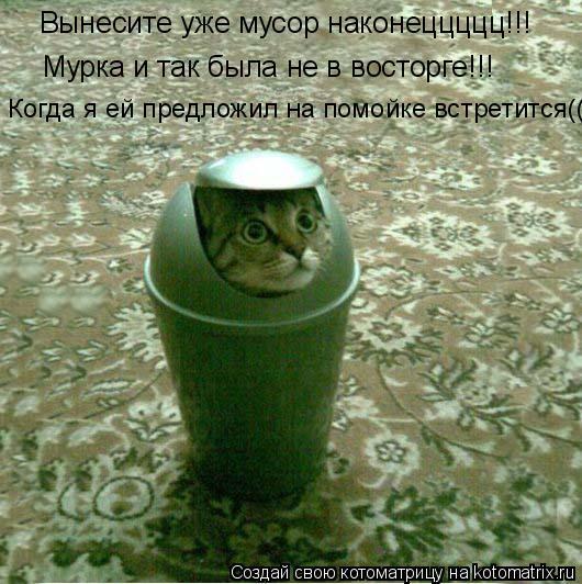 Котоматрица: Вынесите уже мусор наконеццццц!!! Мурка и так была не в восторге!!! Когда я ей предложил на помойке встретится((