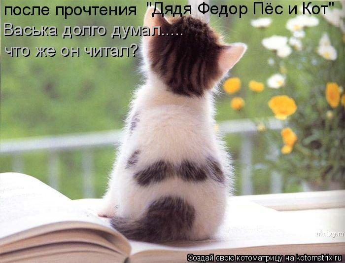 """Котоматрица: после прочтения   """"Дядя Федор Пёс и Кот"""" Васька долго думал..... что же он читал?"""