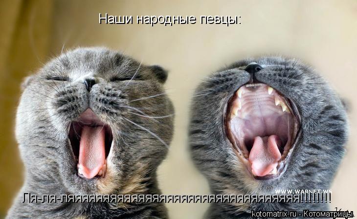 Котоматрица: Наши народные певцы: Ля-ля-ляяяяяяяяяяяяяяяяяяяяяяяяяяяяяяяяя!!!!!!!!