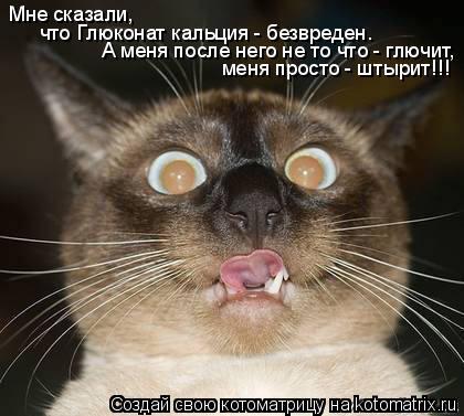 Котоматрица: Мне сказали,  что Глюконат кальция - безвреден. А меня после него не то что - глючит, меня просто - штырит!!!