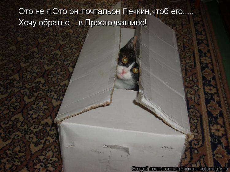 Котоматрица: Это не я.Это он-почтальон Печкин,чтоб его...... Хочу обратно....в Простоквашино!
