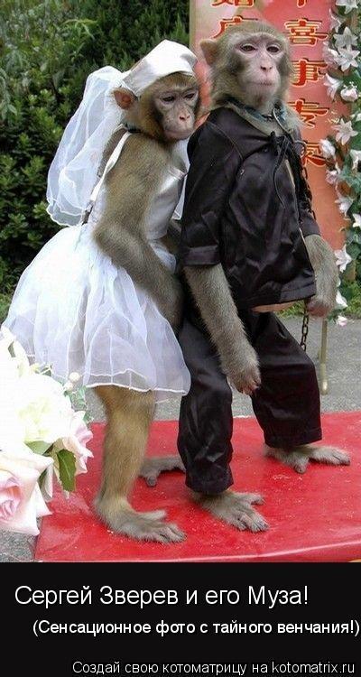 Котоматрица: Сергей Зверев и его Муза! (Сенсационное фото с тайного венчания!)