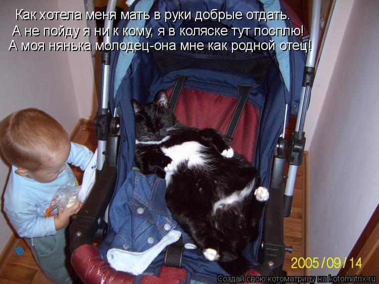 Котоматрица: Как хотела меня мать в руки добрые отдать. А не пойду я ни к кому, я в коляске тут посплю! А моя нянька молодец-она мне как родной отец!