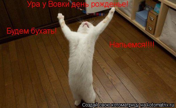 Котоматрица: Ура у Вовки день рожденье!Будем праздновать!Напьемся! Ура у Вовки день рожденье! Ура у Вовки день рожденье! Будем бухать! Напьемся!!!!
