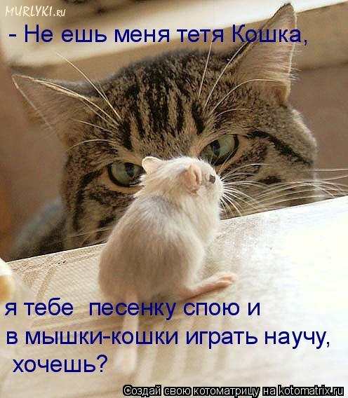 Котоматрица: - Не ешь меня тетя Кошка, я тебе  песенку спою и хочешь? в мышки-кошки играть научу,