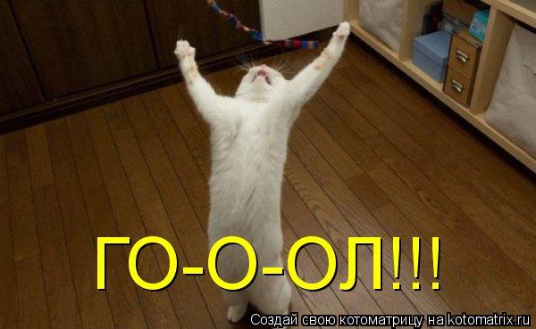 Котоматрица: ГО-О-ОЛ!!!