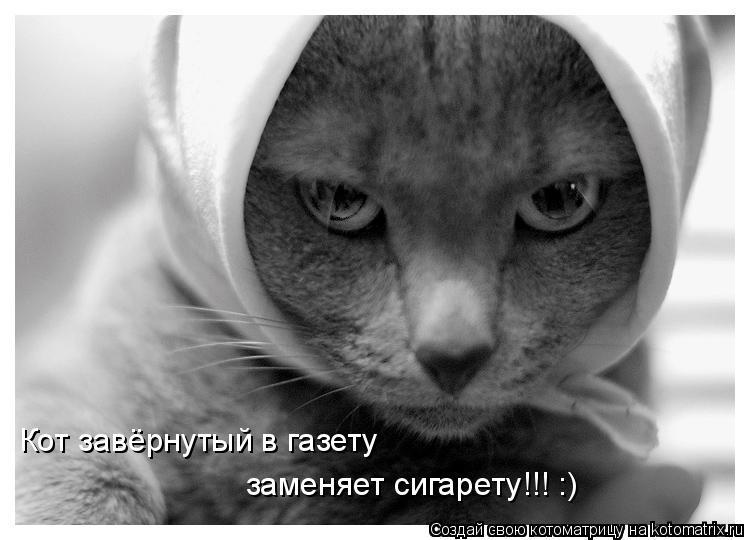 Котоматрица: Кот завёрнутый в газету заменяет сигарету!!! :)