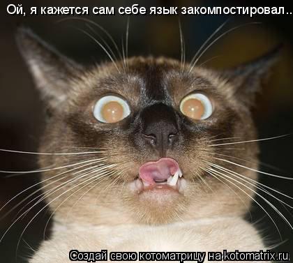 Котоматрица: Ой, я кажется сам себе язык закомпостировал...