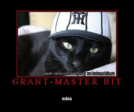 Котоматрица: GRANT-MASTER BIT sdsa