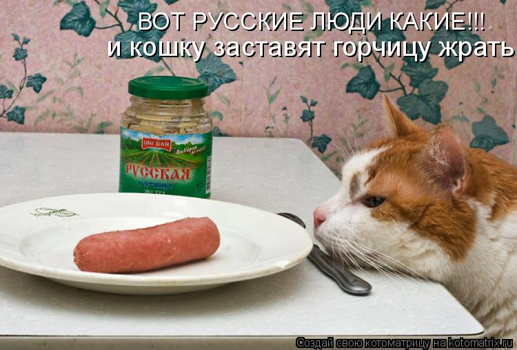 Котоматрица: и кошку заставят горчицу жрать ВОТ РУССКИЕ ЛЮДИ КАКИЕ!!!