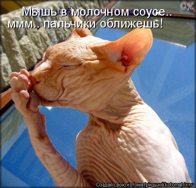 Котоматрица: Мышь в молочном соусе..  ммм.. пальчики оближешь!