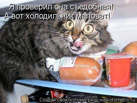 Котоматрица: Я проверил она съедобная! А вот холодильник маловат!